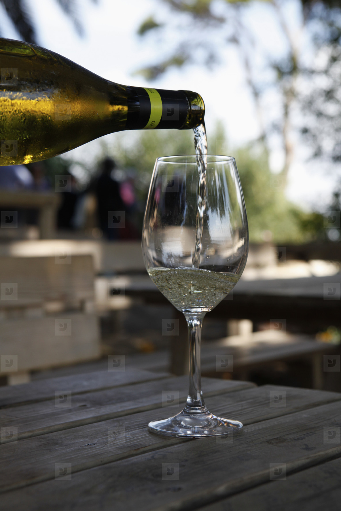 Wine Tasting  28