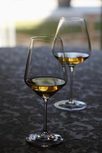 Wine Tasting 41