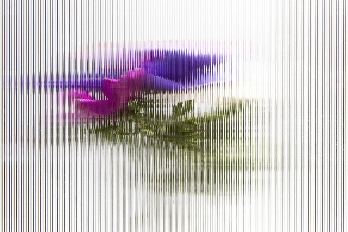Flower Power  22