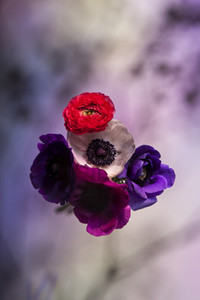 Flower Power 45