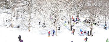 Winter Days  04