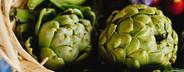 Vintage Bloom  06