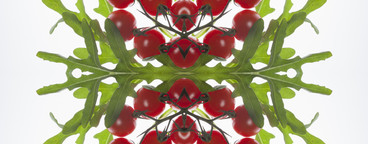 Food Kaleidoscope  02
