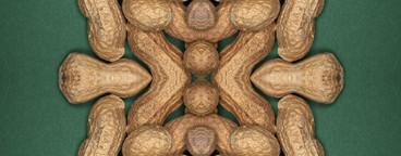 Food Kaleidoscope  07