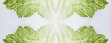 Food Kaleidoscope  08