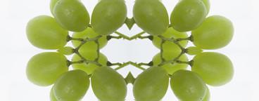 Food Kaleidoscope  10