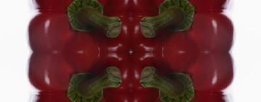 Food Kaleidoscope  14
