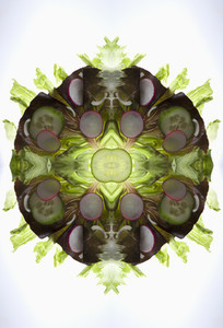 Food Kaleidoscope 23