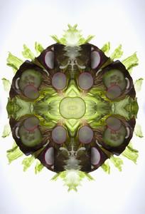 Food Kaleidoscope  23