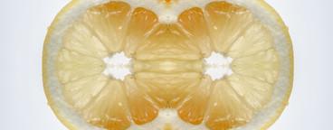 Food Kaleidoscope  31
