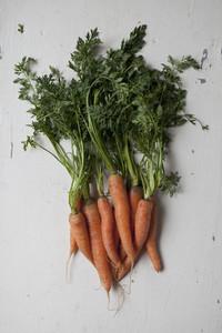 Fresh Food Rustic Remix 38