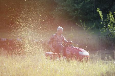 Summer Harvest 03