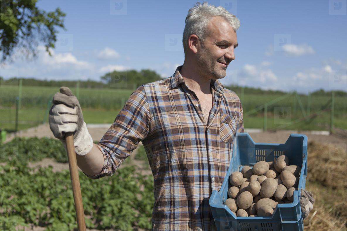 Summer Harvest  05