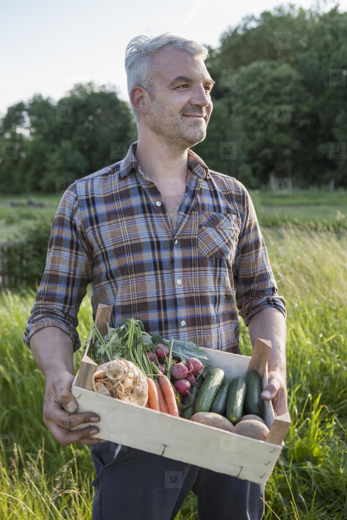 Summer Harvest  14