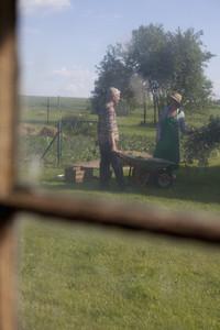 Summer Harvest 26