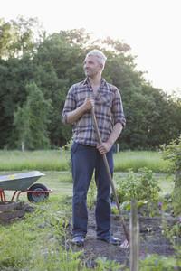 Summer Harvest 27