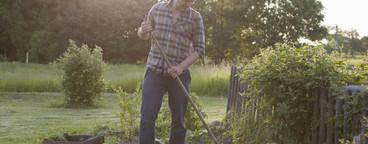Summer Harvest  30
