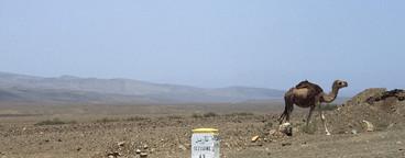 Moroccan Getaway  05