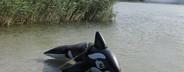 Lake Trip  01