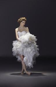 The Bride 29