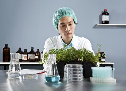 Lab Technicians 30