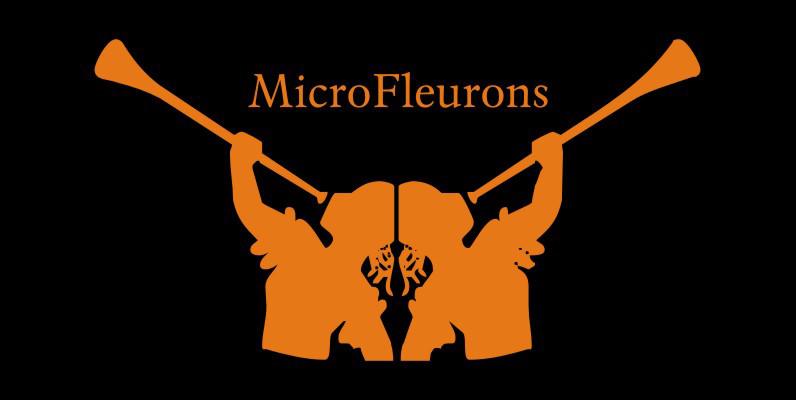 Micro Fleurons
