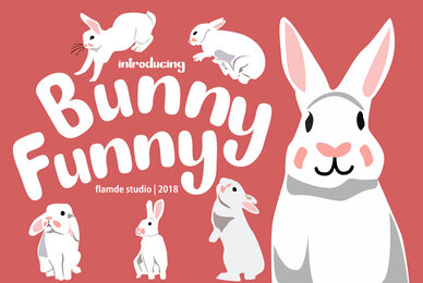 Bunny Funny
