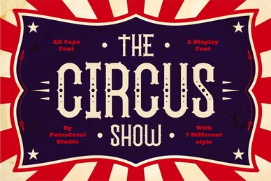 The Circus Show