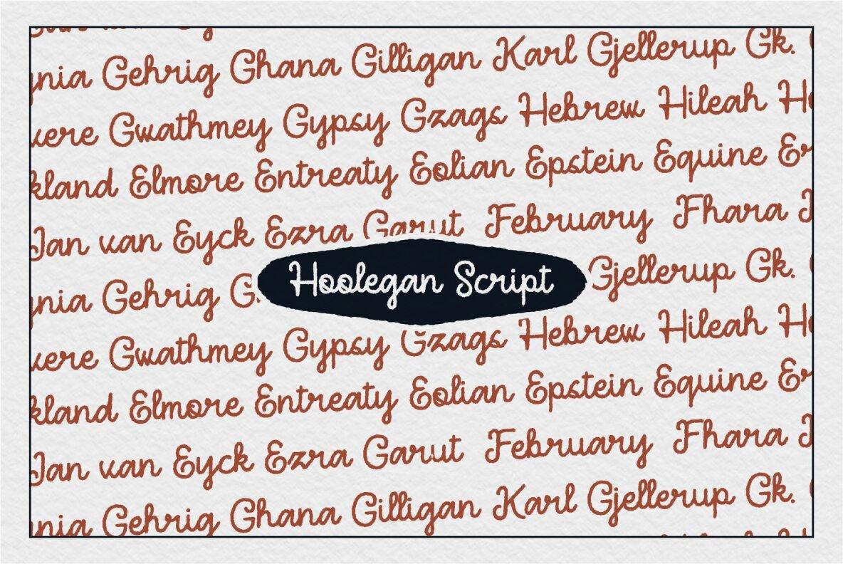 Hoolegan