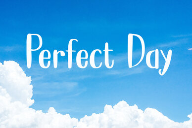 Perfect Day