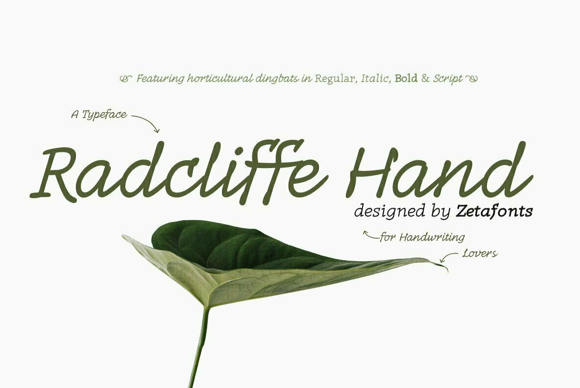 Radcliffe Hand