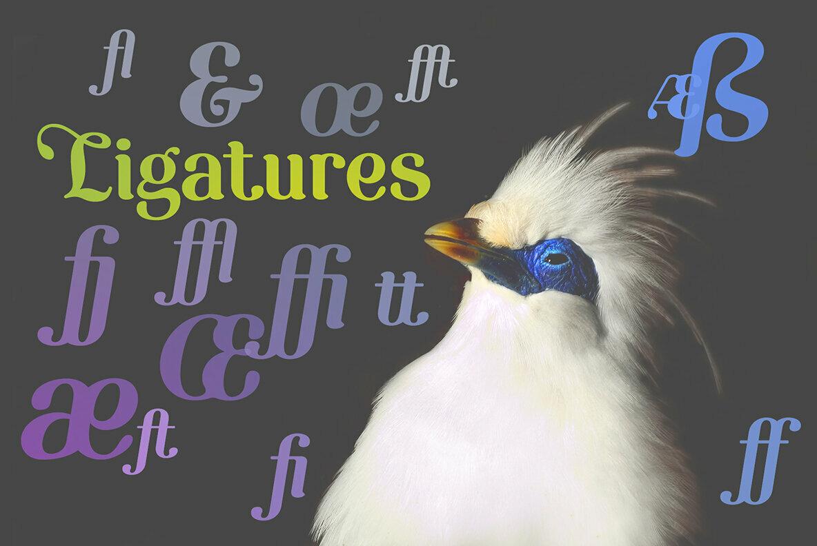 Etewut Serif