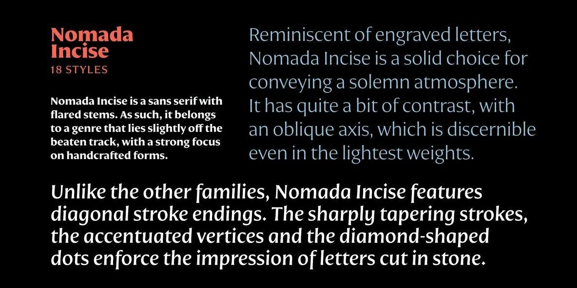 Nomada Incise