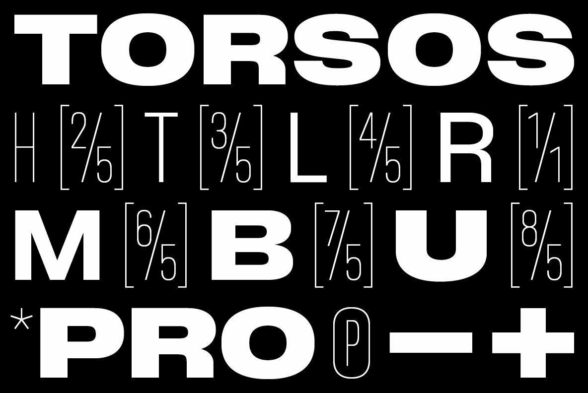 BB Torsos Pro