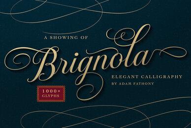 Brignola
