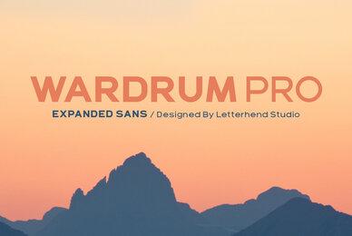 Wardrum Pro
