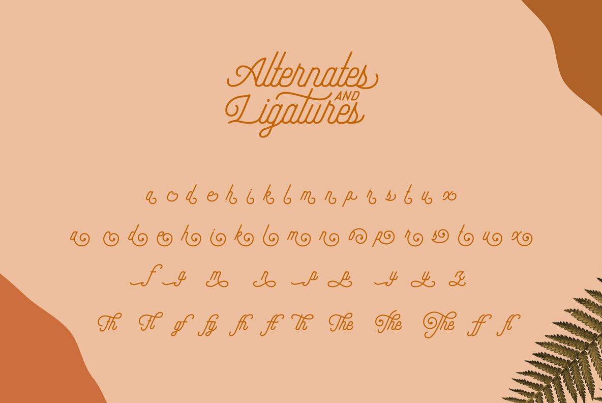 Hipster Script and Sans