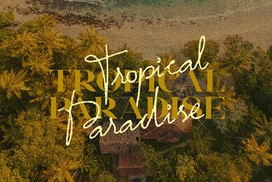 Tropical Paradise   Font Duo
