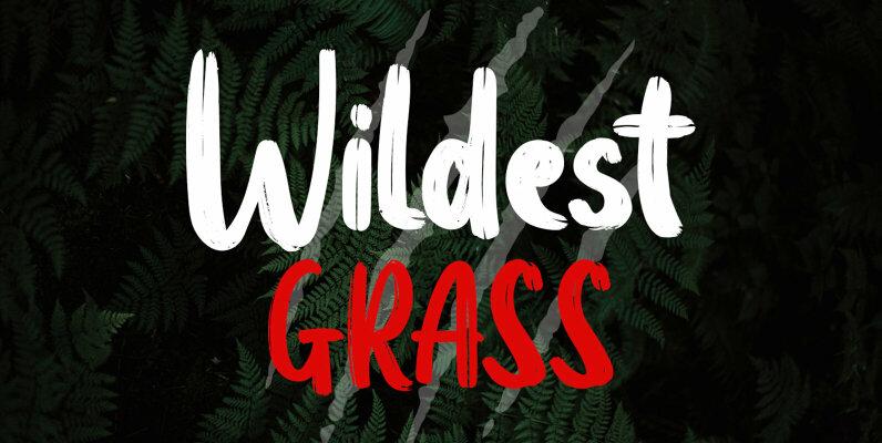 Wildest Grass