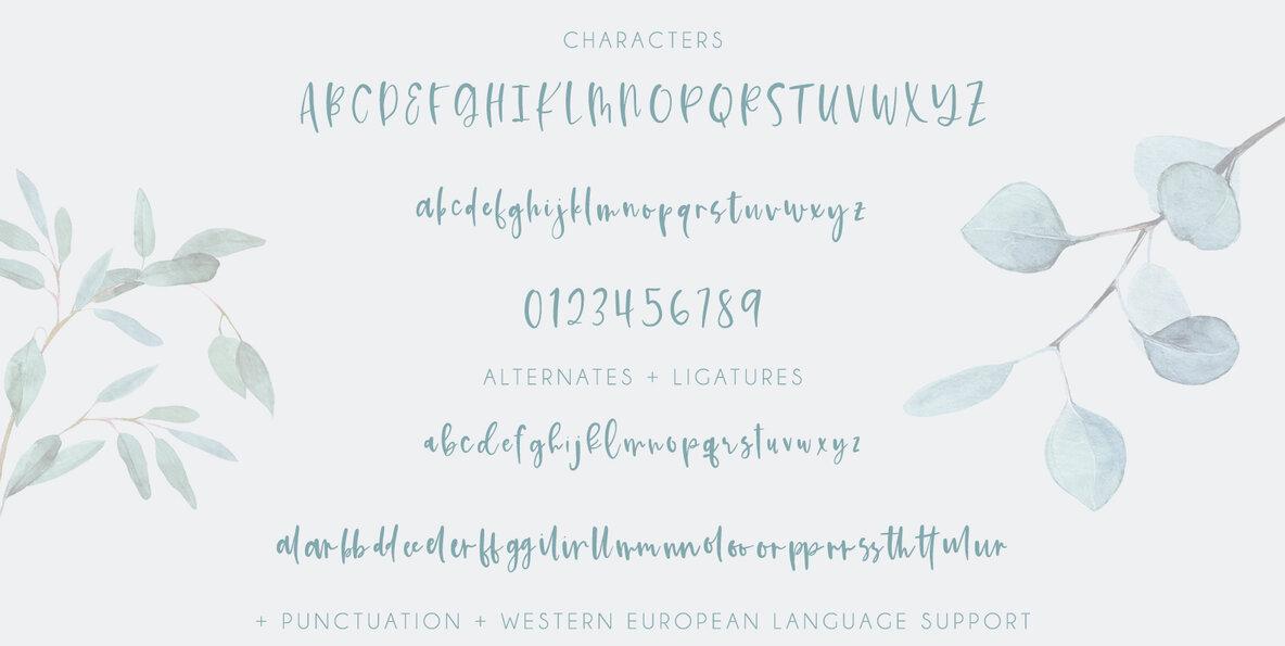 Kismet Script