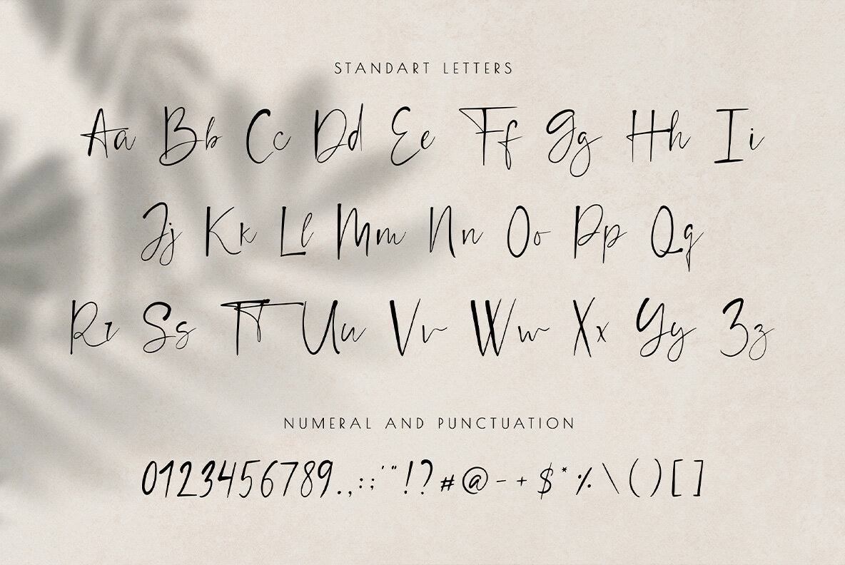Chic Font Duo