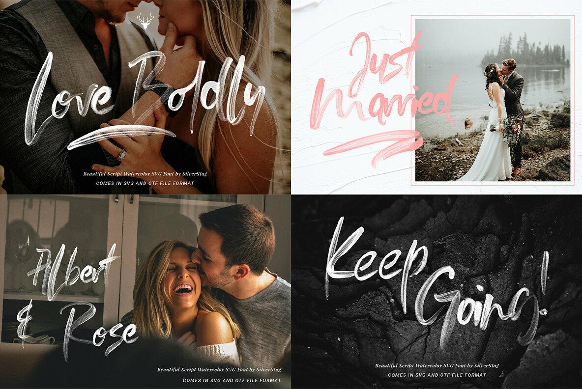 Creative Font Bundle   Limited Time Edition