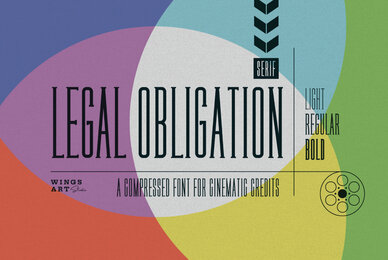 Legal Obligation Serif