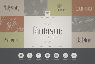 Fantastic Collection