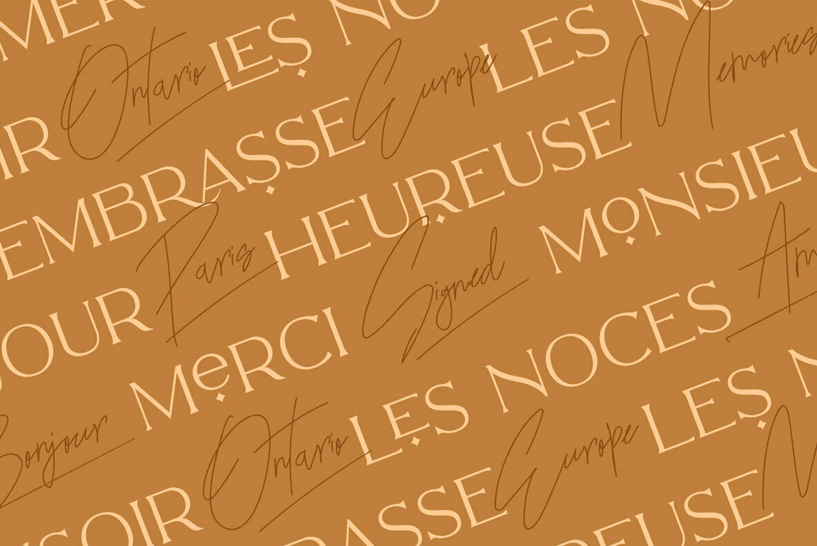 The Paris Lamore Sans   Script