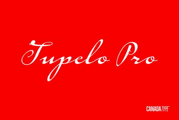 Tupelo Pro
