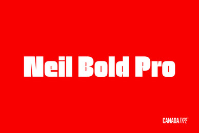 Neil Bold Pro