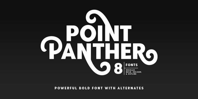 Point Panther
