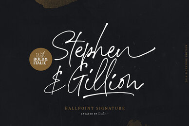 Stephen Gillion