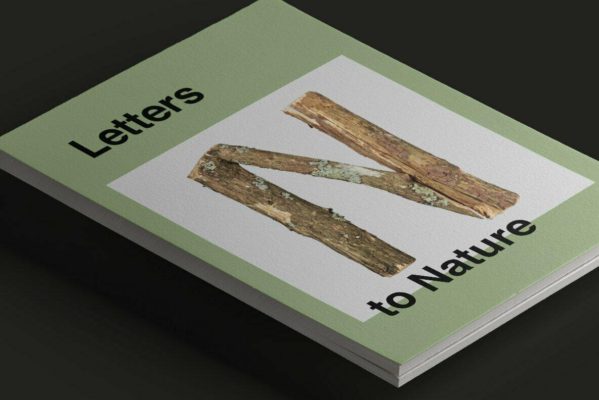 Dry Twigs V2 SVG Font
